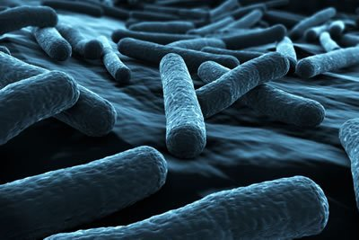 Legionella Control, Risk Assessment, Legionella Training & Testing