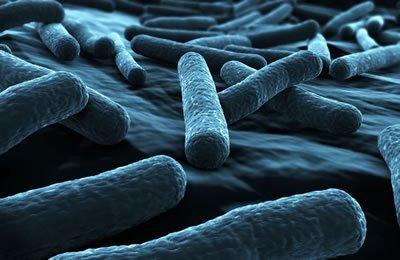 Facts about Pontiac Fever & Legionnaires' Disease