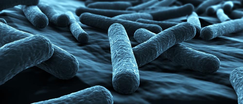 Legionella control services