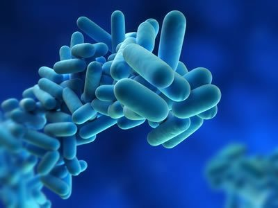 Download HSE's ACOP L8 - Controlling Legionella in Water Systems