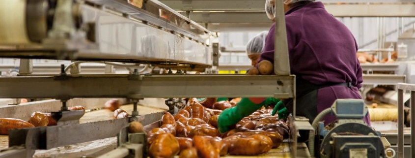 Wastewater treatment in the food processing sector